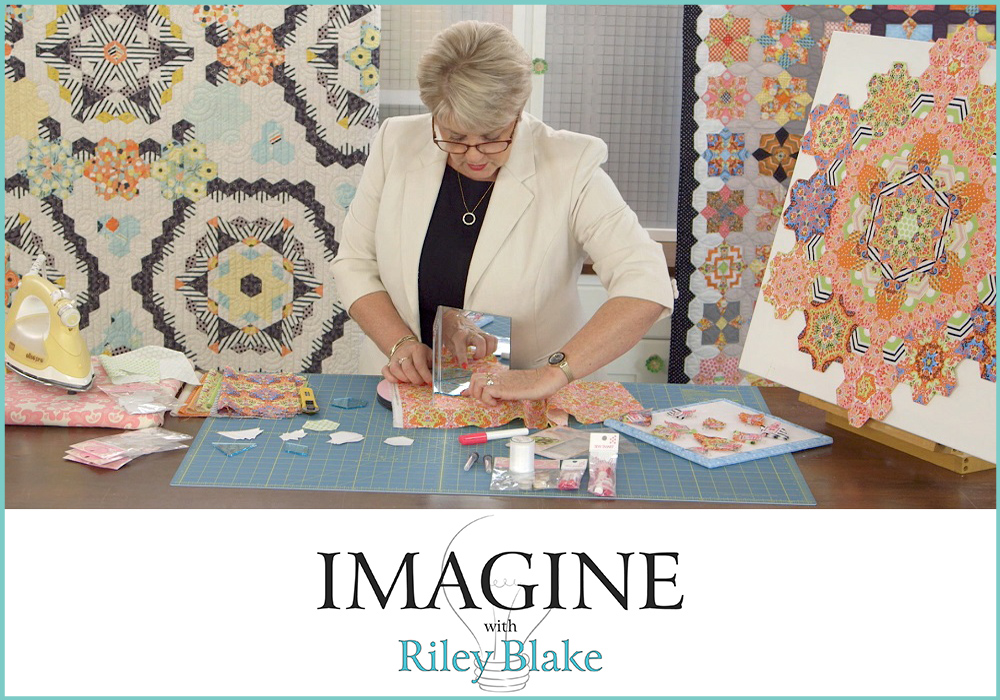 I Am An Imagine Instructor Sue Daley Designs Blog