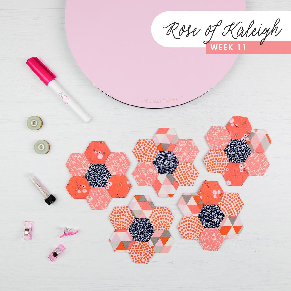 Rose of Kaleigh Step 11